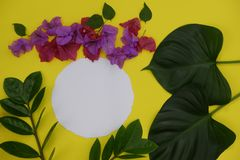 Mock-up white paper with space for text or picture on yellow background and tropical leaves and flowers royalty free stock image