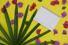 Mock-up white paper with space for text or picture on yellow background and tropical palm leaf and flowers royalty free stock photography