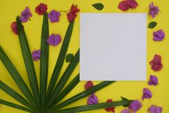 Mock-up white paper with space for text or picture on yellow background and tropical palm leaf and flowers stock photos