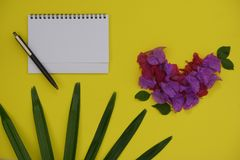 Mock-up white paper with space for text or picture on yellow background and tropical palm leaf and flower royalty free stock photo