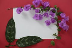 Mock-up white paper with space for text on red background and tropical leaves and flowers stock image