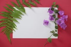 Mock-up white paper with space for text on red background and tropical leaves and flowers royalty free stock photo