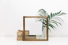 Mock up wooden frame with green tropical leaves. stock photo