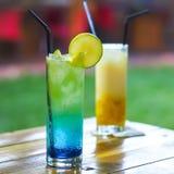Mocktailmixologist & x28; beverages& x29; voedselfotografie Royalty-vrije Stock Afbeelding