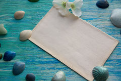 Mockup on the background of sea shells theme, holiday, letter, postcard Royalty Free Stock Photo
