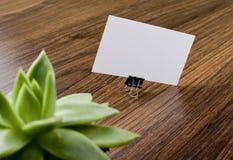 Mockup białe wizytówki z rośliną przy drewnianym tłem Obrazy Royalty Free