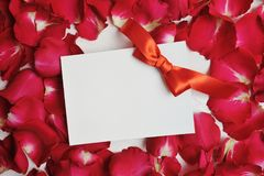 Mockup Card on red rose petals for Valentine`s Day. Flat lay, top view with a place for your text Royalty Free Stock Photography