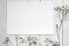 Mockup dla prezentacj z łyszczec kwiatami Obrazy Stock