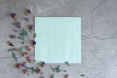 Mockup of gypsophila flowers in envelope on blue background top view in flat lay style stock images