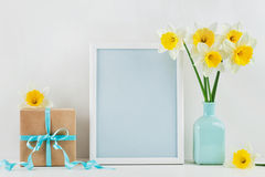 Mockup of picture frame decorated narcissus or daffodil flowers in vase and gift box for greeting on mother or woman day. Stock Photography