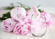 Mockup - stemless wine glass, with peonies behind. Floral mock-up of a stemless wine glass, in front of a bunch of peonies, perfect for businesses who sell royalty free stock images