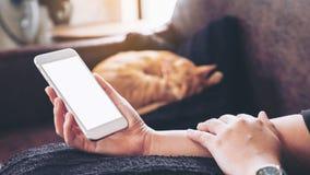 Mockup wizerunek kobiety ` s ręka trzyma białego telefon komórkowego z pustym ekranem i sypialnym brown kotem ja obrazy stock