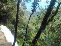 Mocoa vattenfall Royaltyfri Fotografi