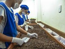 Coffee roaster production line of the Pessegueiro Farm in Mococa. Mococa, Sao Paulo Brazil. April 01, 2005. Coffee roaster production line of the Pessegueiro royalty free stock image