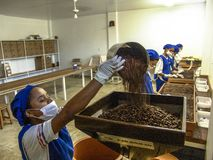 Coffee roaster production line of the Pessegueiro Farm in Mococa. Mococa, Sao Paulo Brazil. April 01, 2005. Coffee roaster production line of the Pessegueiro royalty free stock photo