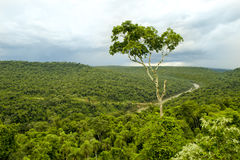Moconá Stock Image