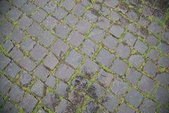 Moczy Kamiennej Drogowej trawy obraz stock