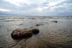 Moczy skały na plaży w wodzie zdjęcie stock