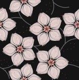 Modèle élégant avec des fleurs de Sakura Photographie stock libre de droits