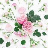Modèle élégant fait de roses, bourgeons et feuille roses sur le fond blanc Configuration plate, vue supérieure Photos libres de droits