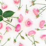Modèle élégant fait de roses, bourgeons et feuilles roses sur le fond blanc Configuration plate, vue supérieure Photographie stock libre de droits