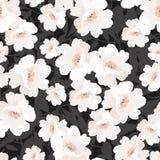 Modèle élégant sans couture avec des roses de fleurs Illustration Stock