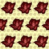 Modèle abstrait coloré de roses rouges de fond Photos stock