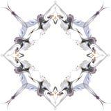 Modèle abstrait d'hiver dans le style d'Art Nouveau Image libre de droits