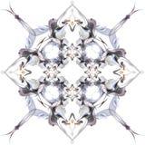 Modèle abstrait d'hiver dans le style d'Art Nouveau Photo libre de droits