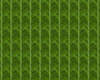 Modèle 2017 abstrait de fond de verdure du printemps Photo libre de droits