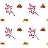 Modèle Autumn Chestnut Berry et gland Images stock