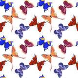Modèle avec de beaux papillons Image libre de droits