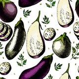 Modèle avec des aubergines Photo stock