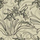 Modèle avec des fleurs d'orchidée Image libre de droits