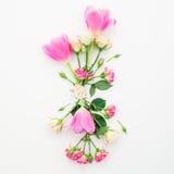 Modèle avec des fleurs, des roses et des branches de tulipe d'isolement sur le fond blanc Configuration plate, vue supérieure Photos stock