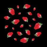 Modèle avec des fraises Image libre de droits
