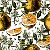 Modèle avec des fruits, des fleurs et des feuilles d'orange Image stock