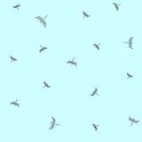 Modèle avec des libellules de vol Images stock