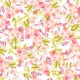 Modèle avec des roses de rose en pastel Illustration Libre de Droits