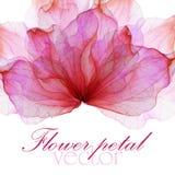 Modèle avec des roses de rose en pastel Illustration de Vecteur
