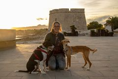 Modèle avec la veste noire dehors dans un coucher du soleil avec des animaux familiers photographie stock libre de droits