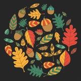 Modèle avec le tilleul de gland de Mapple de chêne de feuilles d'automne Images stock