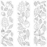 Modèle avec le tilleul de gland de Mapple de chêne de feuilles d'automne Image libre de droits