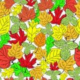 Modèle avec les feuilles d'automne colorées, vecteur Photos stock