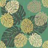 Modèle avec les feuilles tropicales de Monstera Photos libres de droits