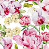Modèle avec les fleurs et les orchidées sensibles de pivoine dessus Image libre de droits
