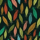 Modèle avec les plumes fleuries Image stock