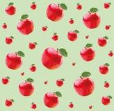 Modèle avec les pommes rouges Photo stock