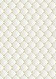 Modèle blanc illustration de vecteur