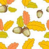 Modèle blanc avec des feuilles et acorns-01 Photos stock